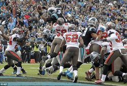 Panther's Touchdown by Jumping